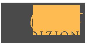 logo-QE